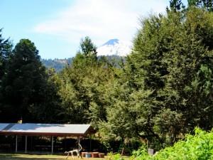 Campingplatz Rundgang