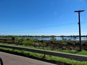 Im Überschwemmungsgebiet des Paraná