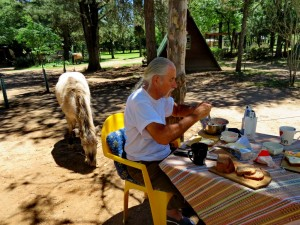 39-img_Campingplatz La Florida - Belgrano