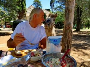 Campingplatz La Florida - Belgrano