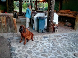 Campingplatz La Florida - Belgranoendern
