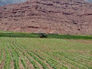 Cachí - Paso Abra Blancö RN 51_039