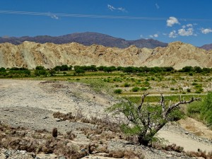 Cafayate - Cachí del Valle_24