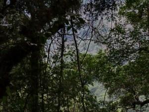 Salta RN 9 - Pumamarca_04