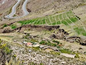 Pumamarca - vor Susques_12
