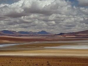 bis San Pedro de Atacama_12