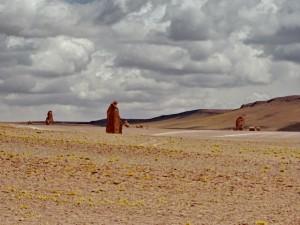 bis San Pedro de Atacama_14