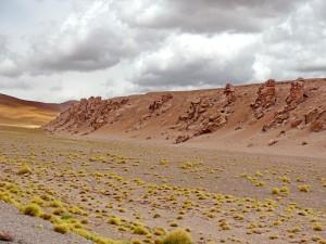 bis San Pedro de Atacama_15