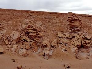bis San Pedro de Atacama_17