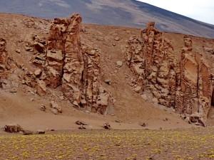 bis San Pedro de Atacama_19