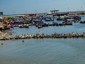 Fischereihafen_39