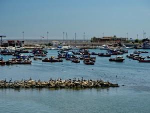 Fischereihafen_40