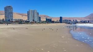 Playa Brava_02